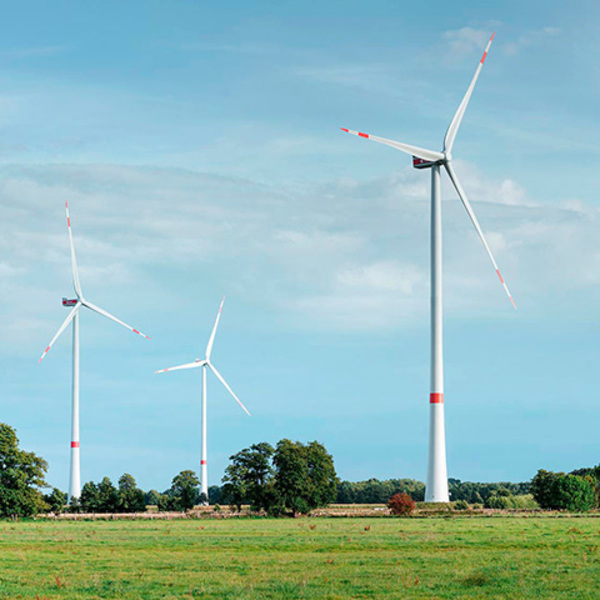 Contrastare il cambiamento climatico, un impegno pubblico e individuale