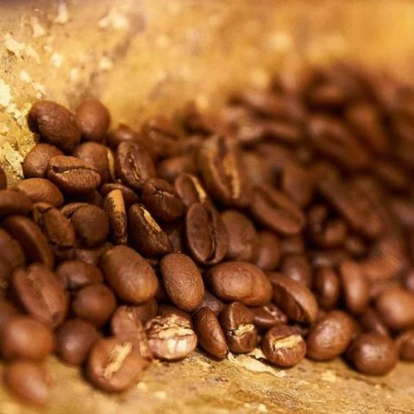 Materiali sostenibili: la similpelle vegana creata dagli scarti del caffè